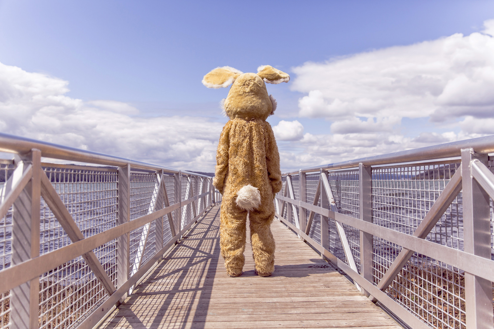 gratisography bunny mascot on pier losing a character