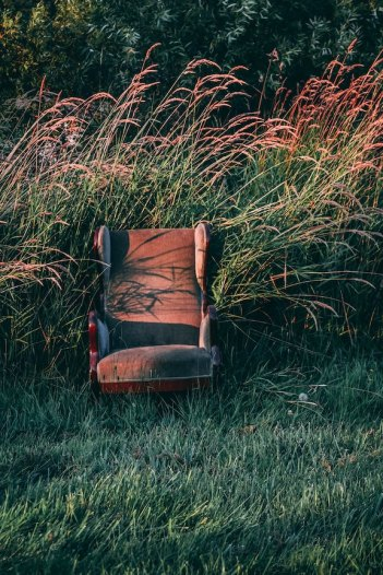 chair in sun and grasses michael-nunes-377069