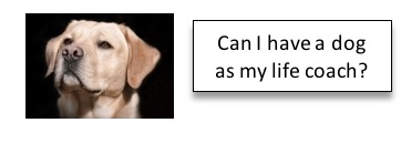 dog as life coach mailing label