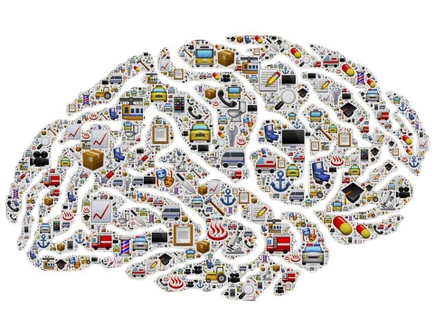 brain-954823_1280