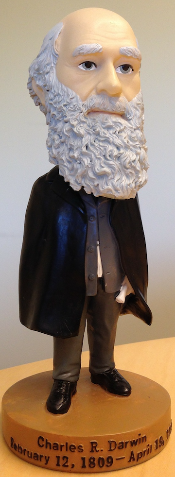 Bobble head doll of Charles Darwin