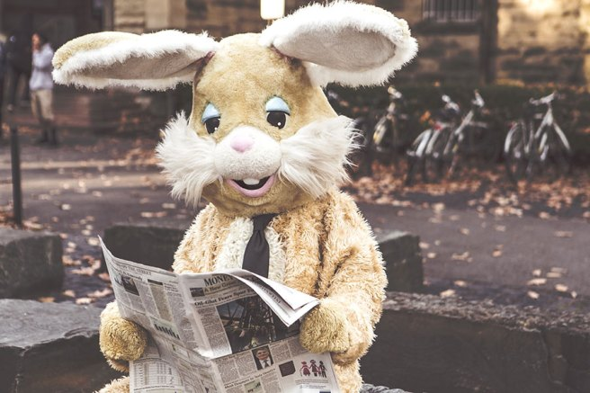 person in bunny suit reading the newspaper